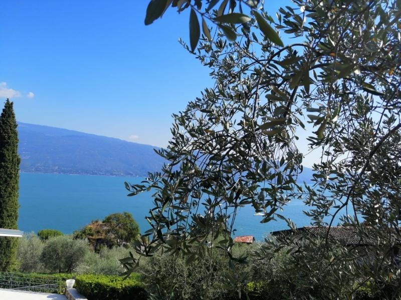 Limonaia mit Seeblick zu verkaufen in Gargnano